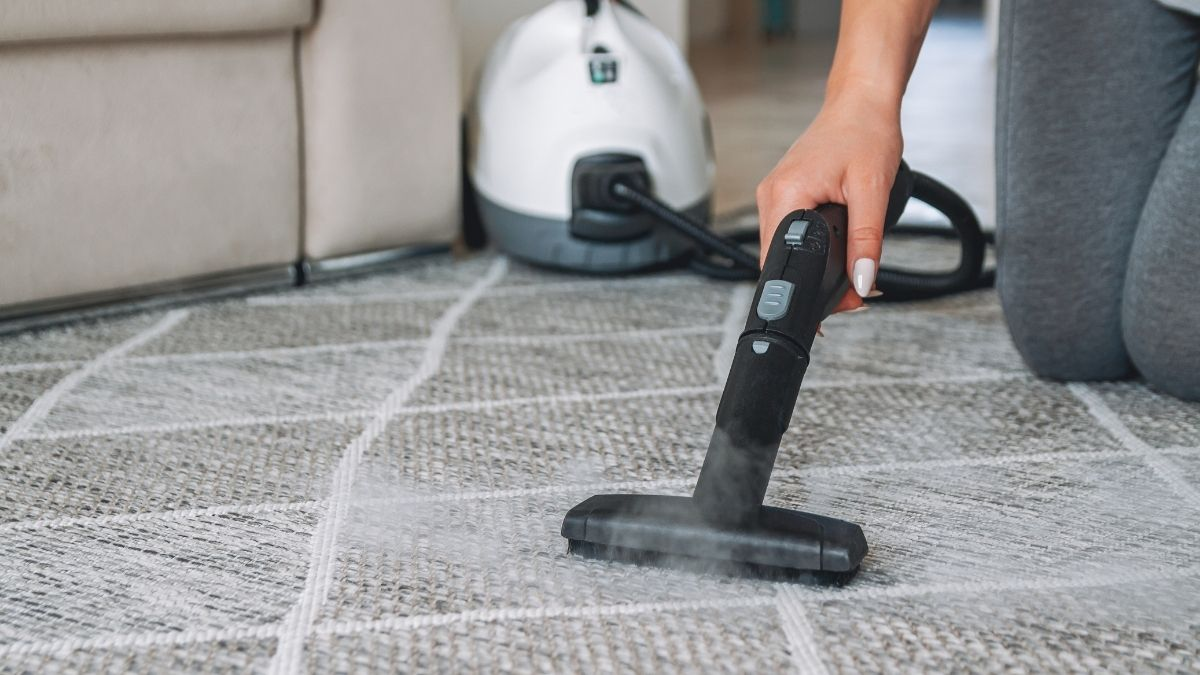 Steam cleaner for fleas