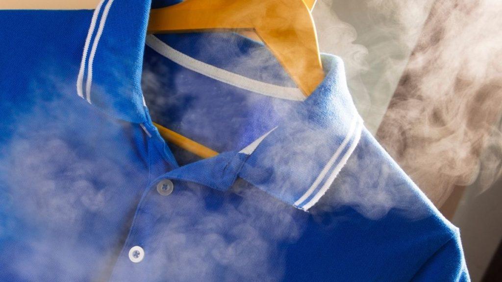 Steam Genie Handheld Steamer Review