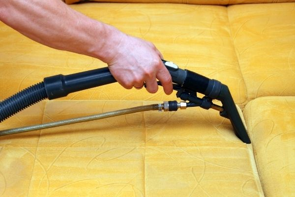 Using an upholstery cleaning machine to clean yellow sofa