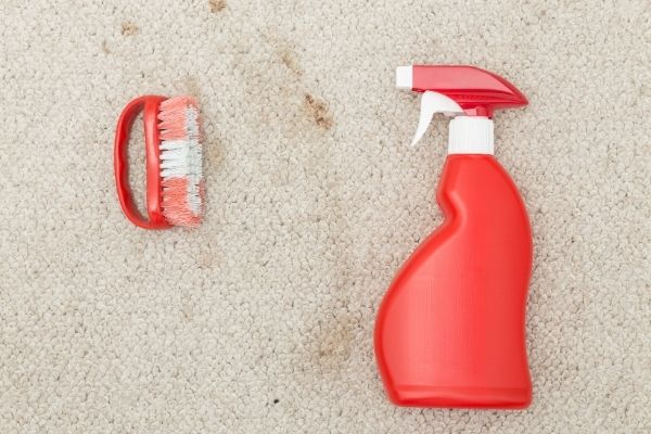 Brush and spot cleaner laid on carpet