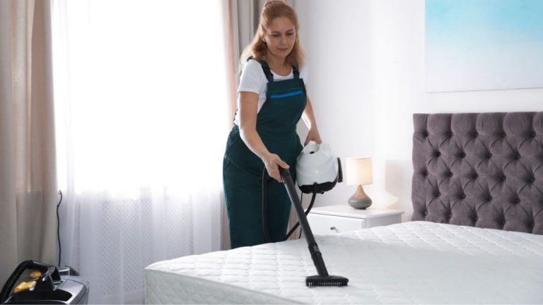 8 Best Steam Cleaners for Bed Bugs [Our Top Picks in 2021]