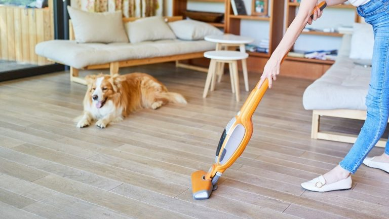 Best Vacuum Mop Combo [Our Top 12 Picks for 2021]