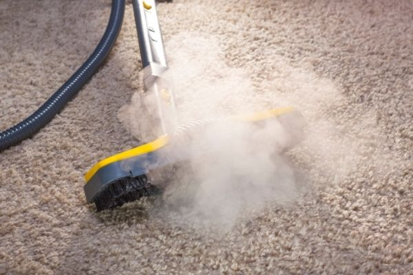 Cleaning carpet with steam cleaner