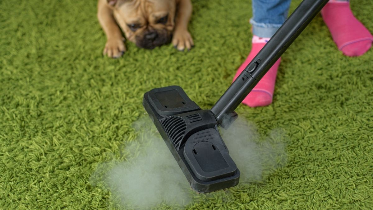 Do Steam Mops Really Work — Practical Timesavers or Another Hassle