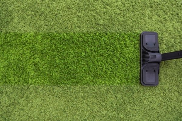Green carpet and steam cleaner