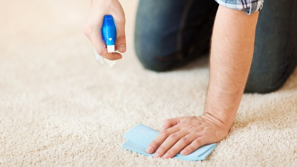 how to pretreat carpet before steam cleaning